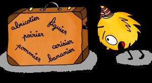 Dessin Français Mystik's fait du vocabulaire