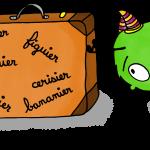vocabulaire_vert