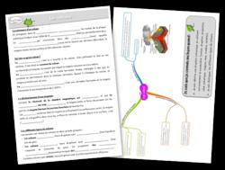 plan de travail sciences volcans leçon carte mentale