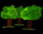 Dessin - La forêt